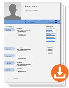 cv-template-pointer